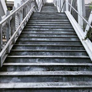 step-3183039_640